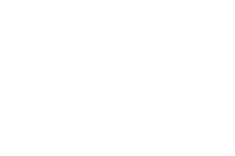 OFFICIAL SELECTION - Bifff - 2021