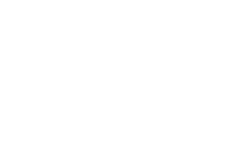 OFFICIAL SELECTION - FIRST-TIME FILMMAKER SESSIONS - 2020