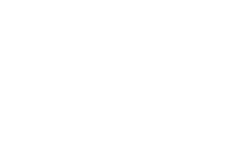 OFFICIAL SELECTION - MONTREAL INDEPENDENT FILM FESTIVAL - 2021 (1)