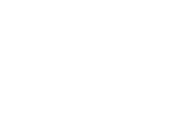OFFICIAL SELECTION - BAMKIDS FILM FESTIVAL - 2014 (1)