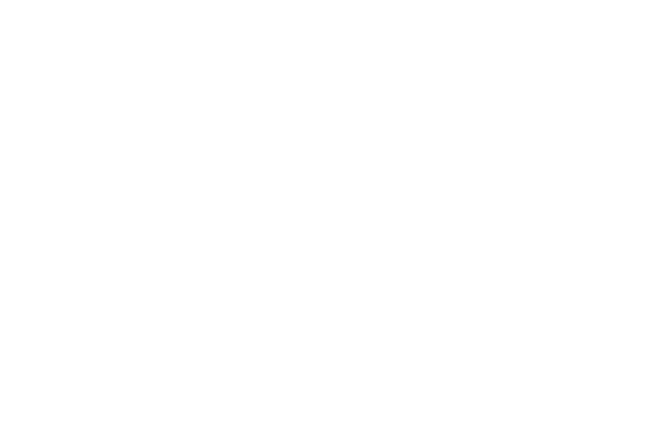OFFICIAL SELECTION - GIFFONI FILM FESTIVAL - 2013 (1)
