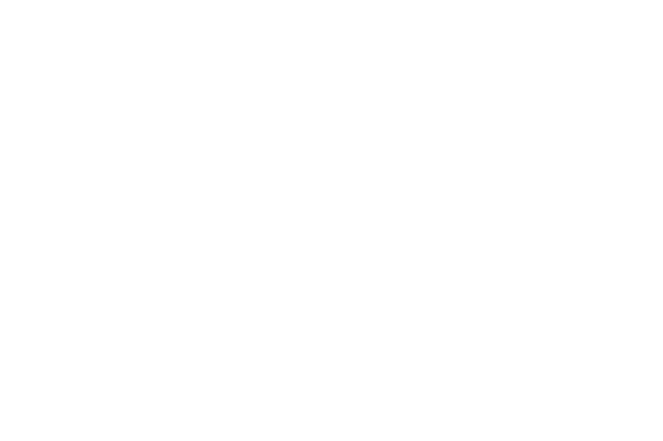 OFFICIAL SELECTION - TIFF KIDS - 2014 (1)