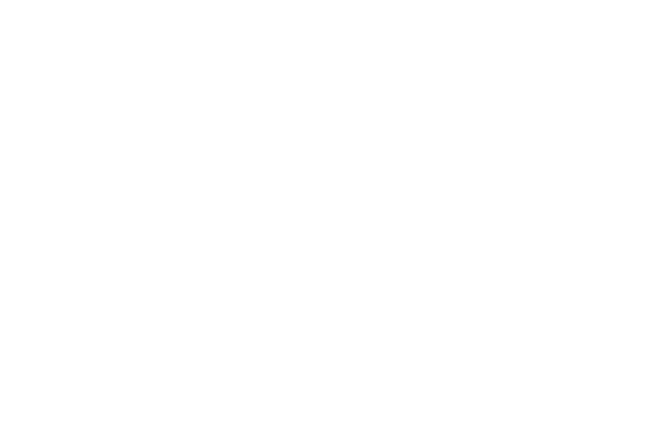 OFFICIAL SELECTION - ACQUEDOLCI INDEPENDENT FILM FESTIVAL - 2012