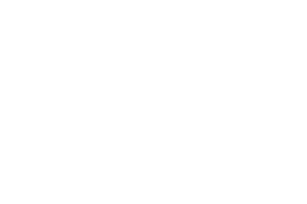 OFFICIAL SELECTION - SHORT FILM DAY - 2013